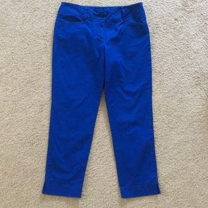 New York and Company Cobalt Cropped Pants